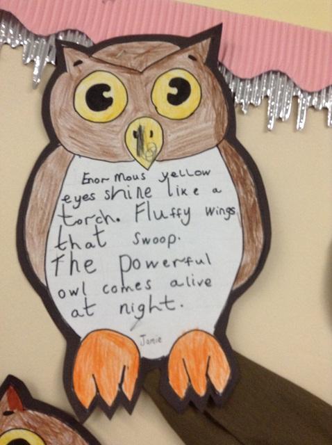 Owls : West Earlham Infant and Nursery School